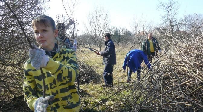 Ismét kertet takarítottak a HIA önkéntesei